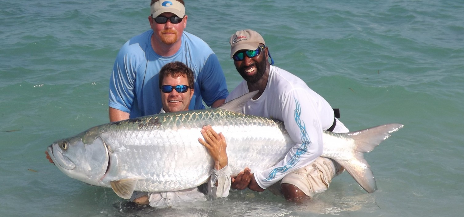 How to fish for tarpon tarpon fish for Where to go fishing