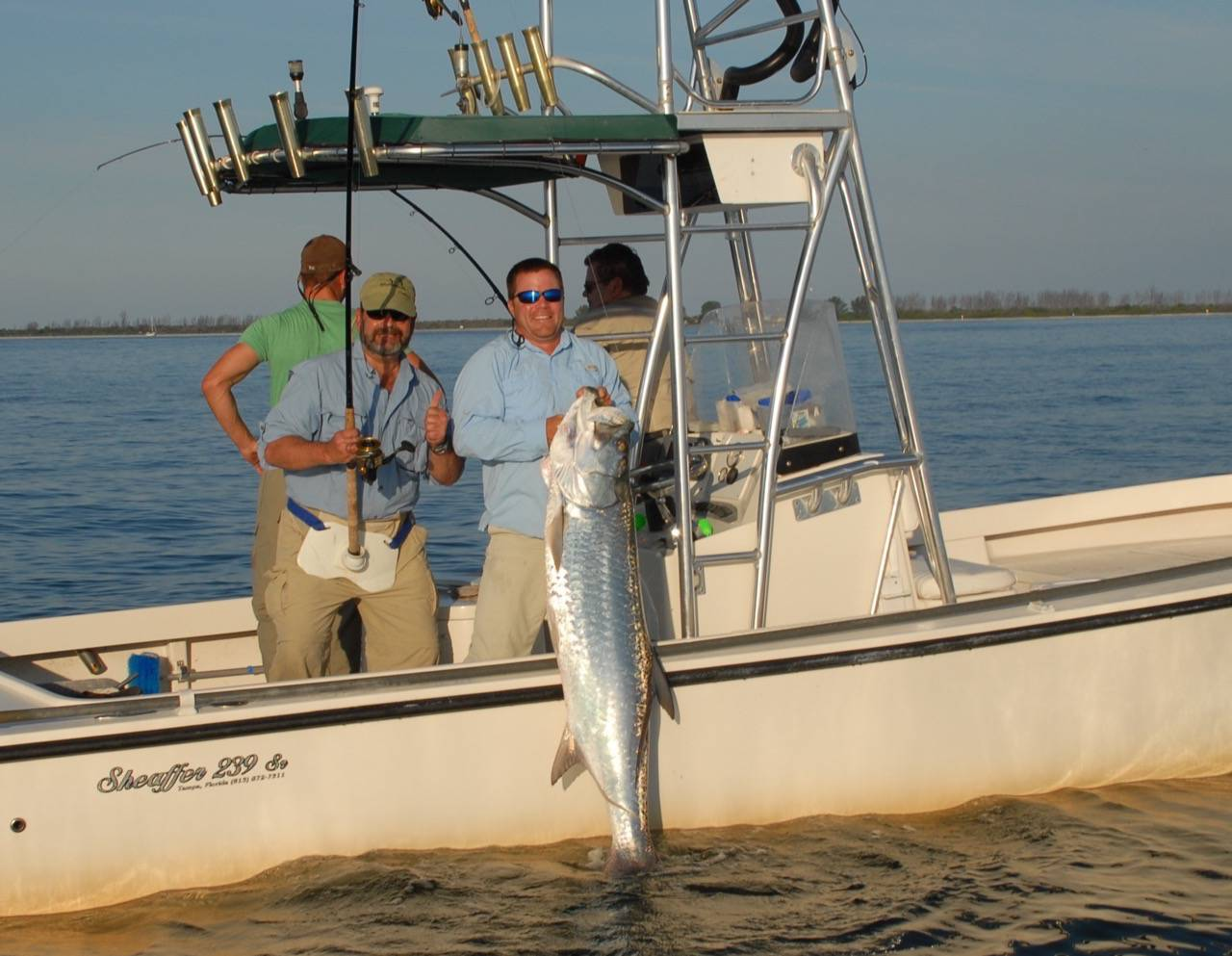 How to fish for tarpon tarpon fishing for Tarpon fishing charters