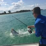 tarpon fishing in tampa bay